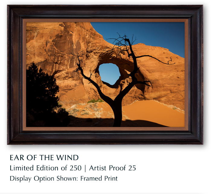 Limited Edition titled Ear of the Wind