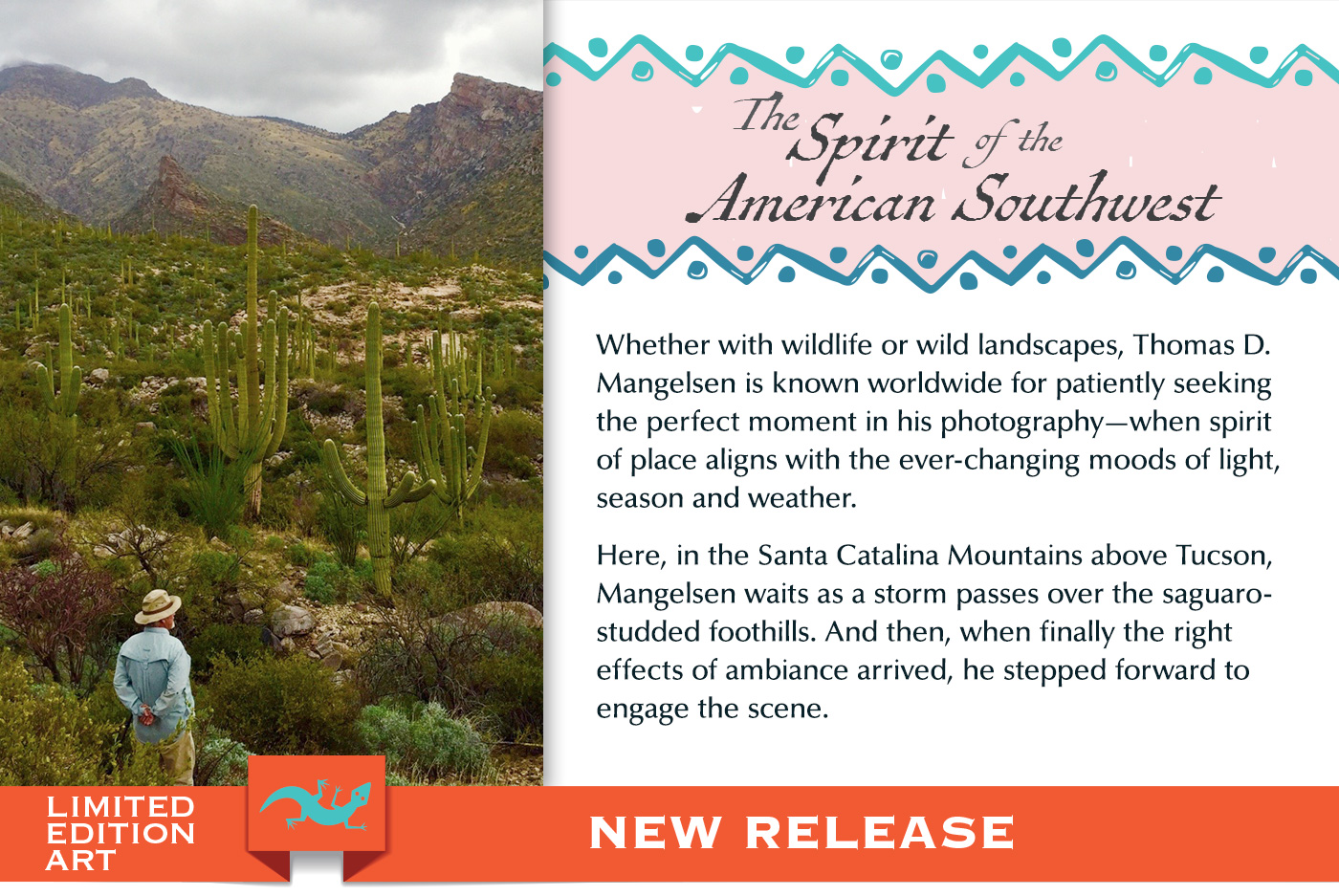 A new image capturing the Spirit of the American Southwest within the Sonoran Desert