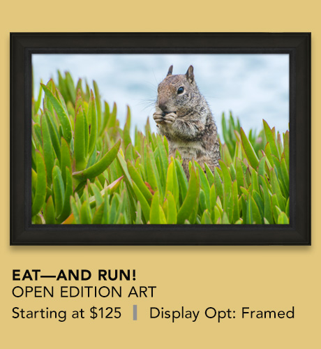 Open Edition titled Eat — And Run!