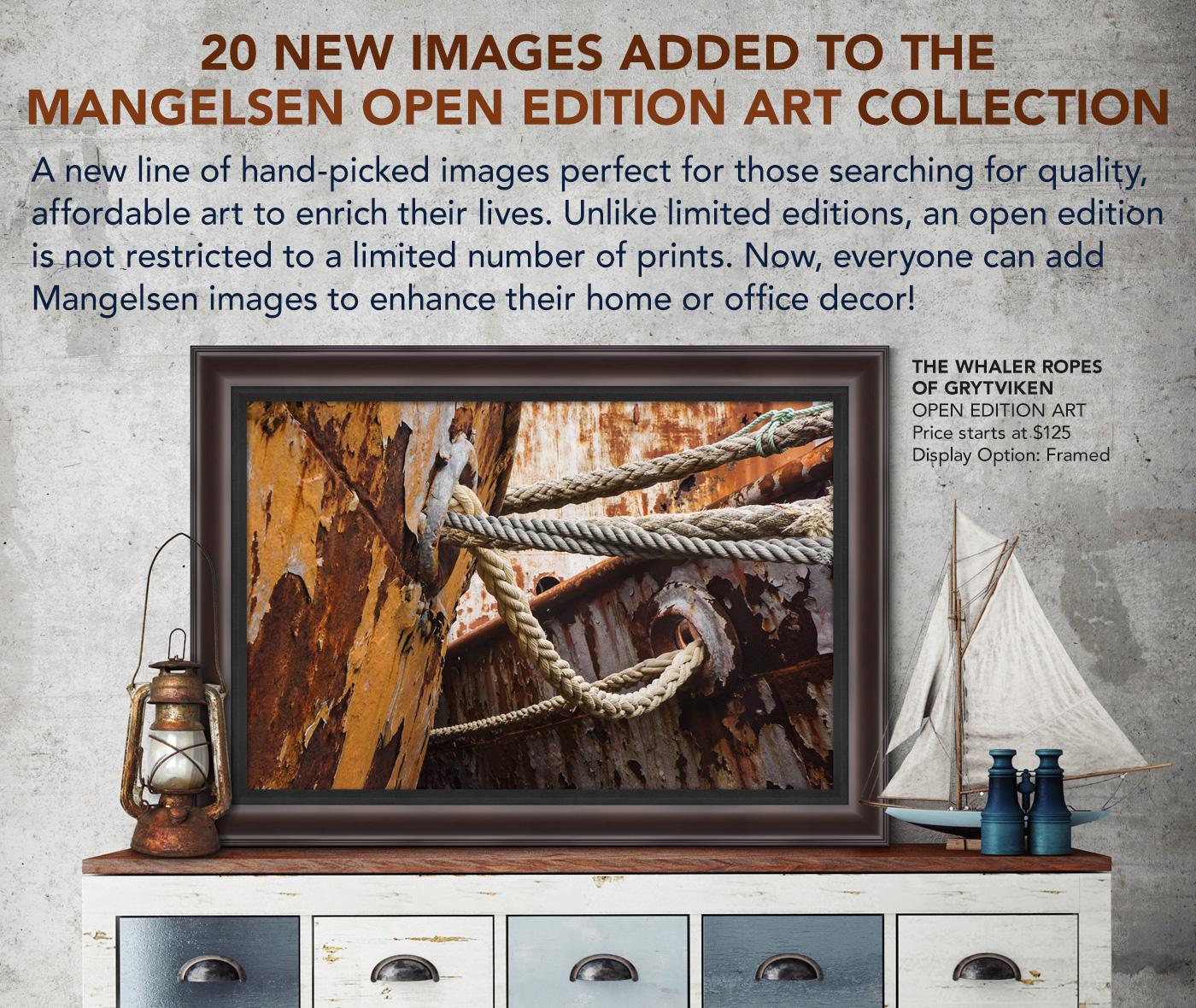 Framed Open Edition Art titled The Whaler Ropes of Grytviken