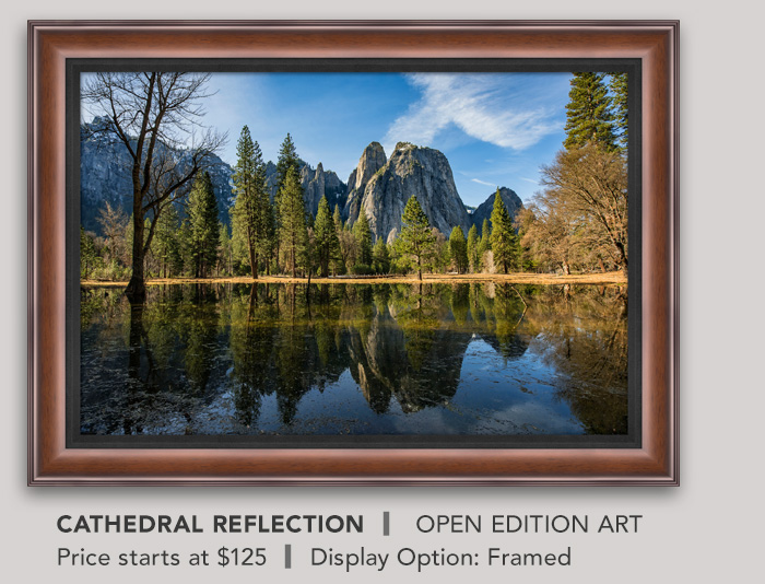 Cathedral Reflection - Framed, Open Edition