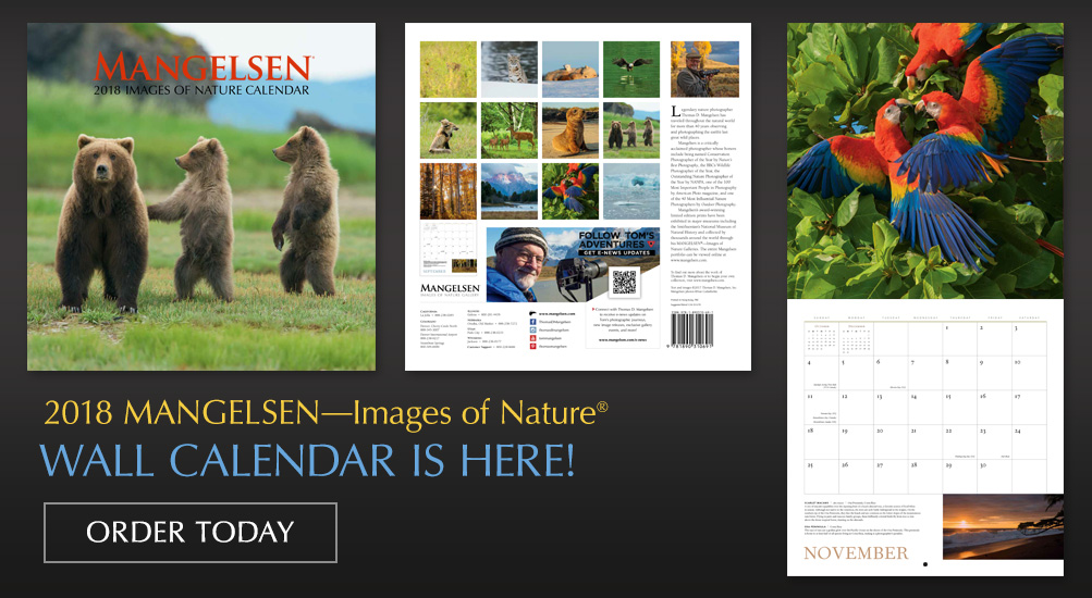 2018 Mangelsen Wall Calendar is Here