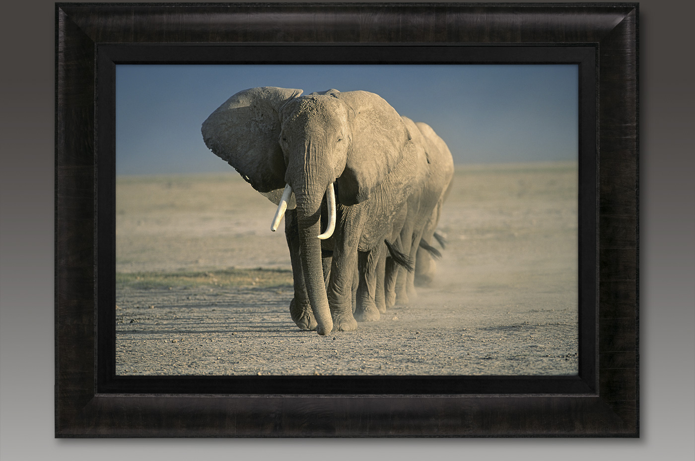 Amboseli Crossing from Mangelen's Legacy Reserve Collection will be up for auction.