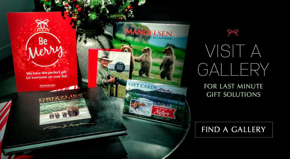 Visit us for last minute gift solutions.