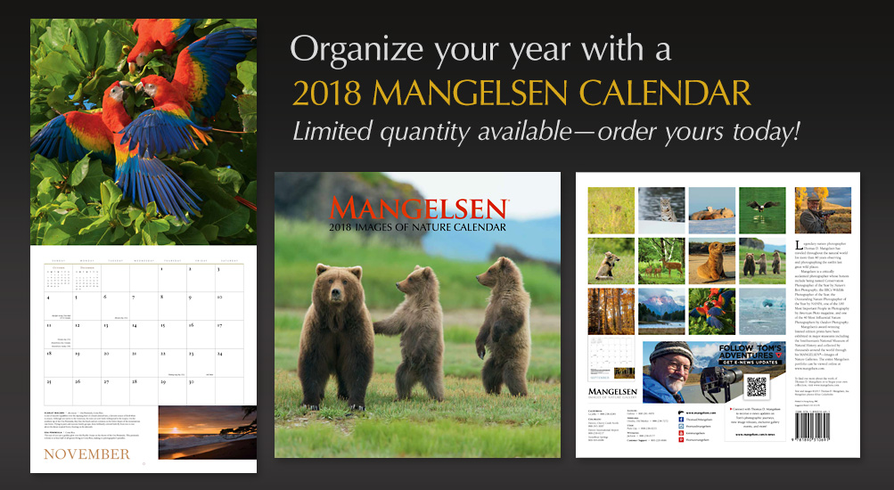 MANGELSEN Calendar | Limited quantity available, order today!