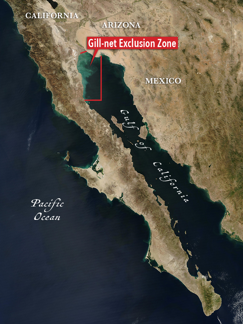 Map of the Gulf of California