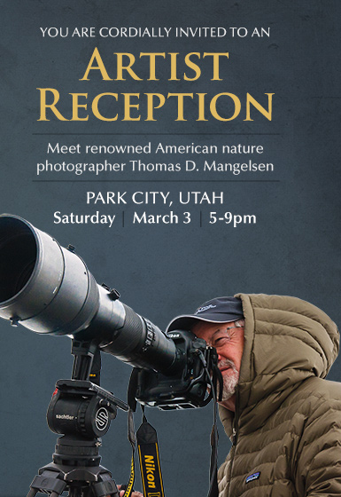 You're invited to an Artist Reception this Saturday in Park City, Utah