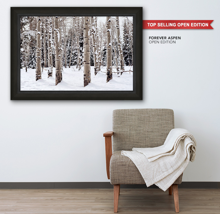 Top Selling Open Edition titled Forever Aspen