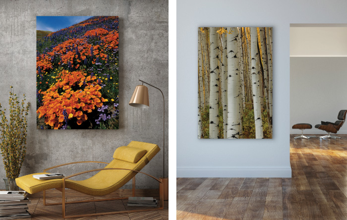 Top Selling Open Edition titled Autumn Splendor at Oxbow Bend