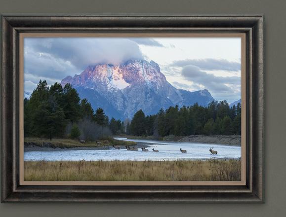 Mangelsen's photograph titled First Light - Elk
