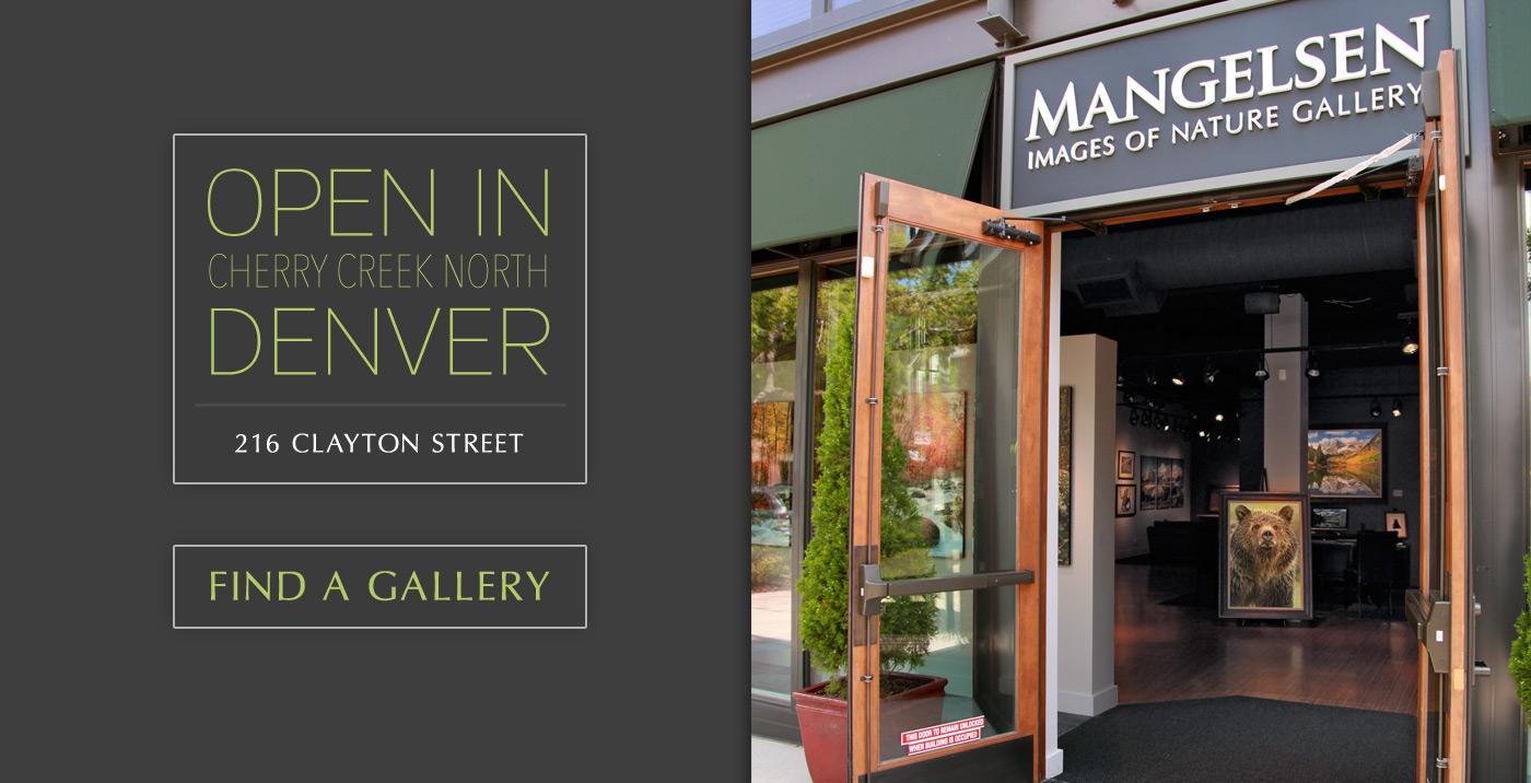 Visit a Mangeslen Gallery or Shop Online.