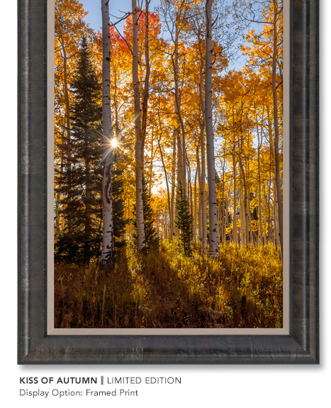 Limited Edition titled Kiss of Autumn