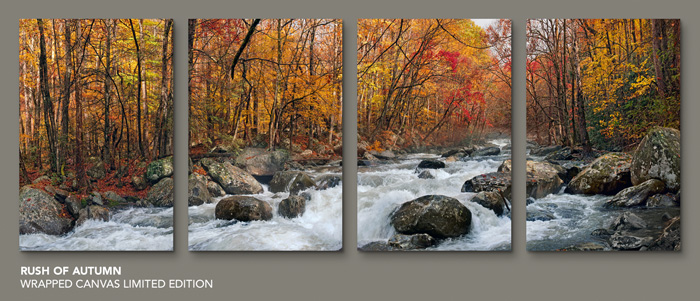 Limited Edition titled Rush of Autumn