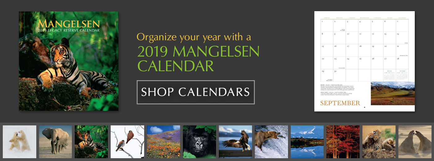 Organize your year with a 2019 Mangelsen Calendar