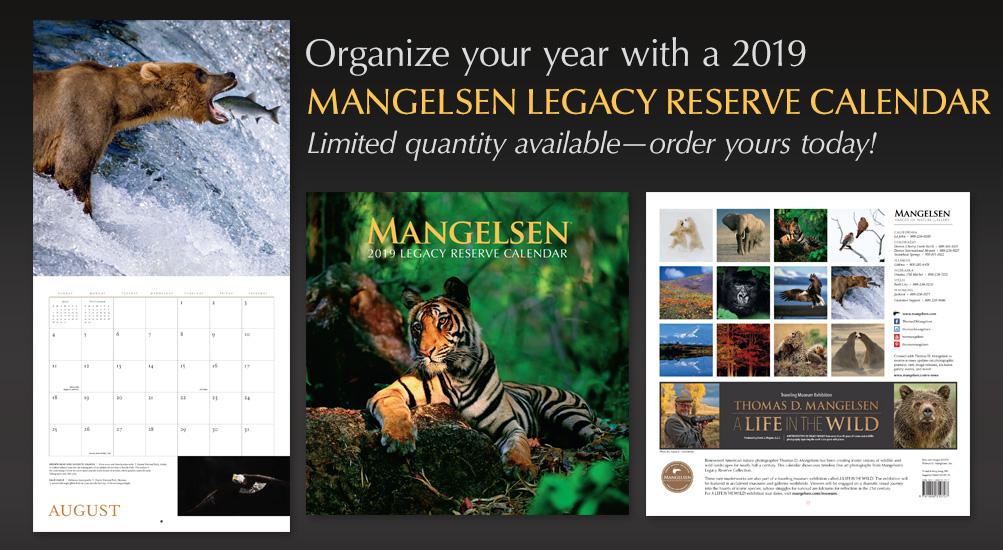 Organize your year with a 2019 Mangelsen Calendar