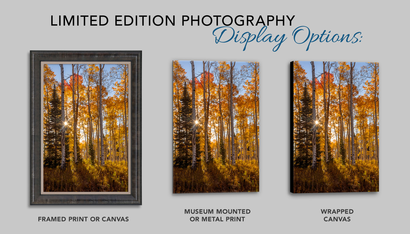 Display Options for Limited Edition Photography