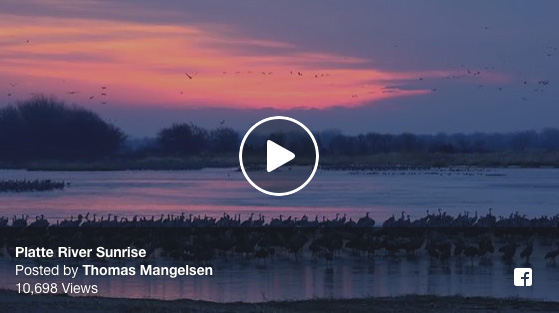 Experience the Sights and Sounds along the Platte River