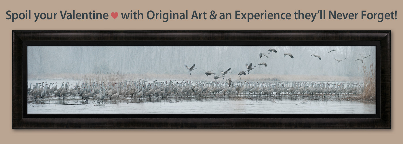 Spoil your Valentine with Original Art and an Experience they will Never Forget!