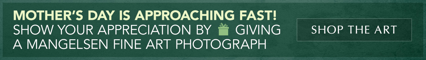 Mother's Day is approaching fast. Give a Mangelsen Fine Art Photograph.