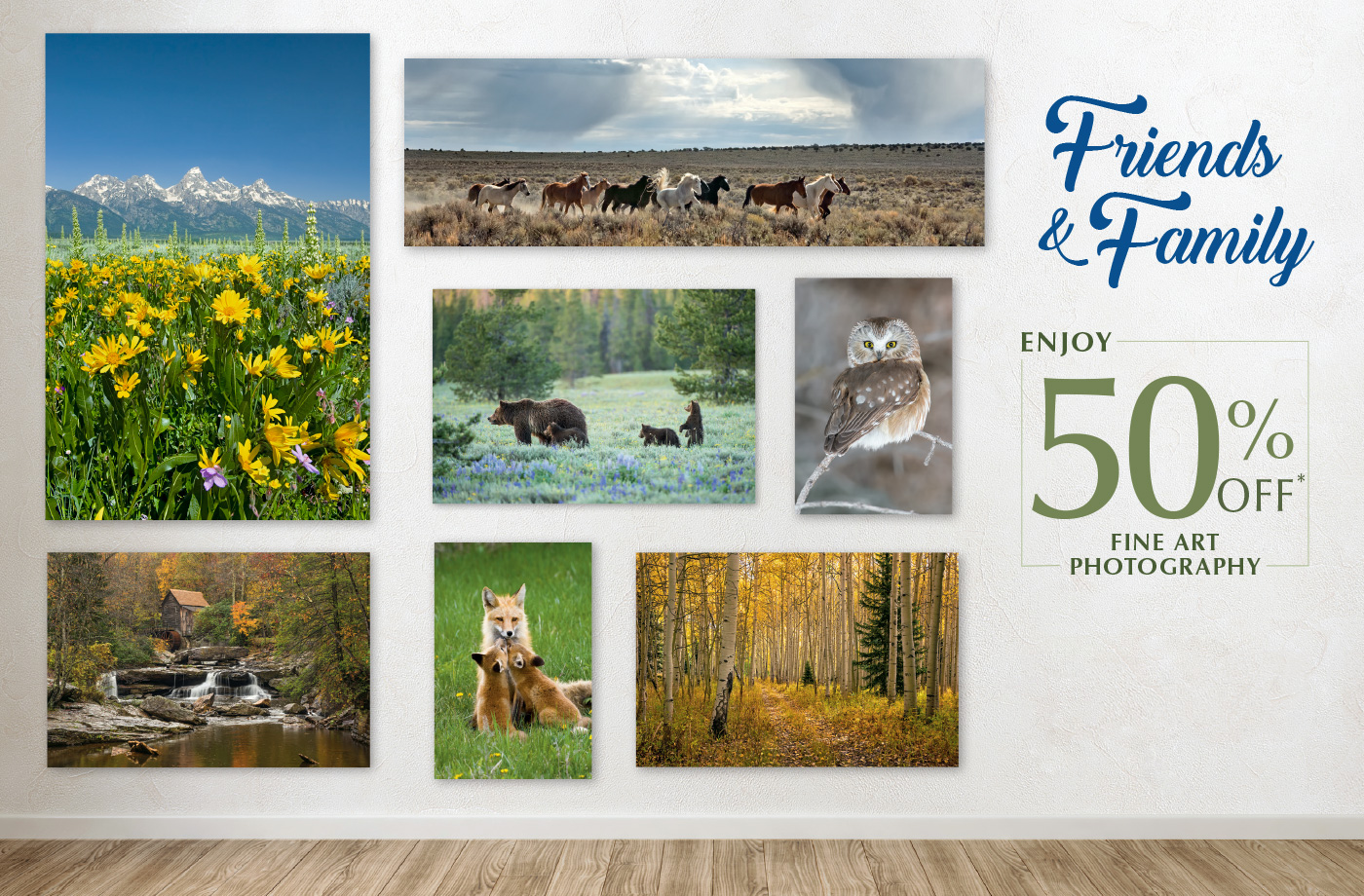 Enjoy 50% off fine art photography with Friends & Family
