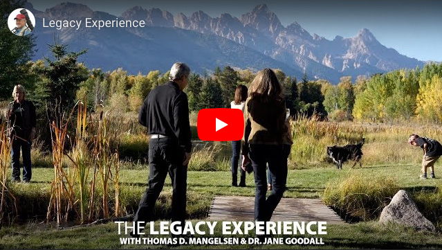 Watch the video below to see highlights from last year's Legacy Experience with Mangelsen and Dr. Jane Goodall in Wyoming.