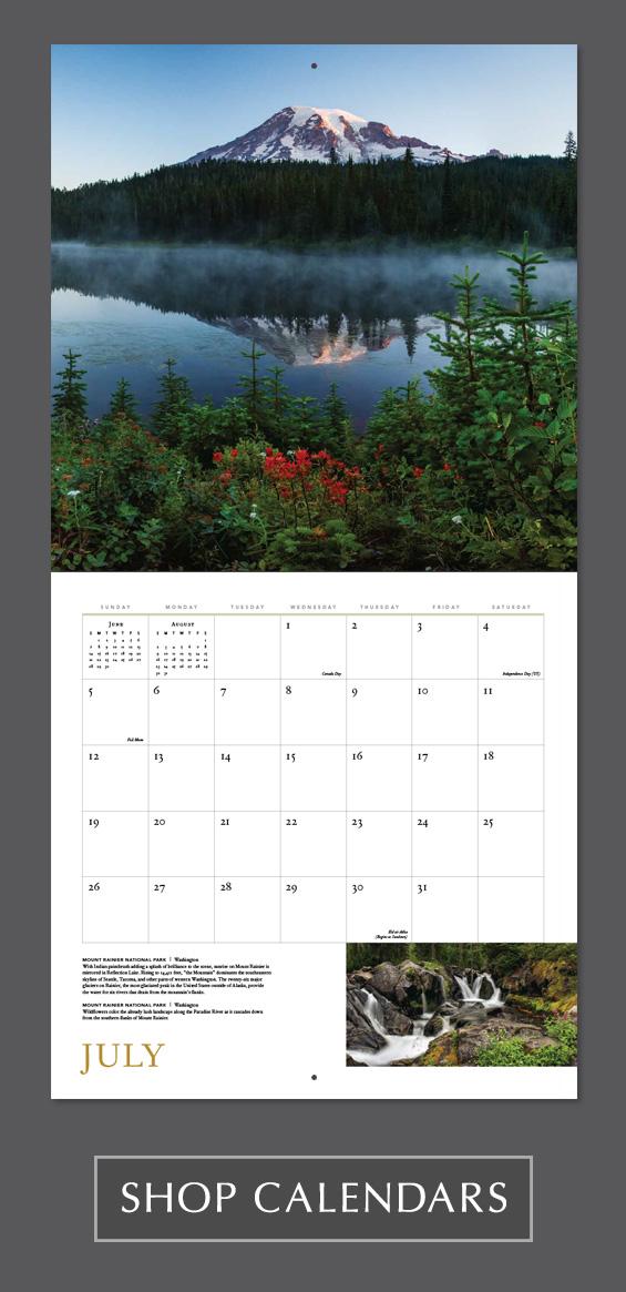 Mangelsen Images of Nature 2020 Wall Calendar