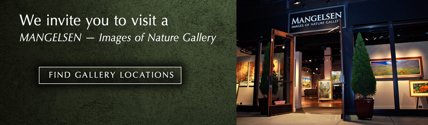 Find a Mangelsen Images of Nature Gallery near you!