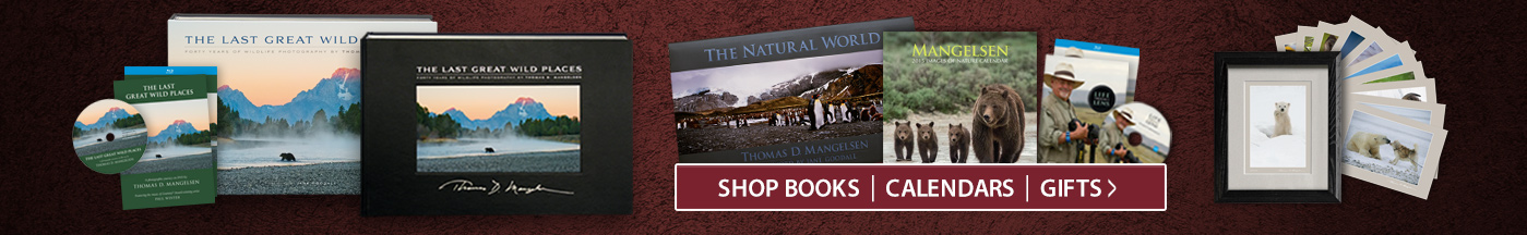 Great gift ideas including books, calendars and DVD's