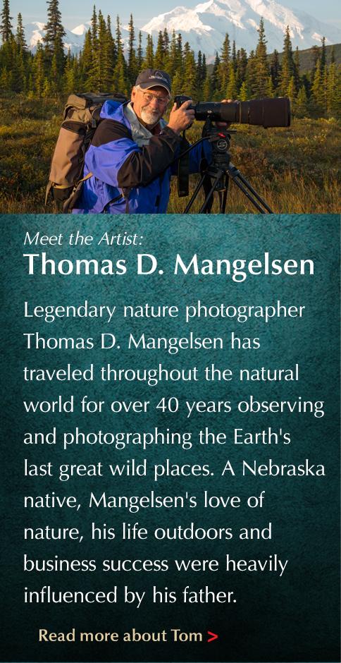 Meet the Artist: Thomas D. Mangelsen